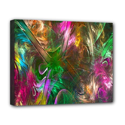 Fractal Texture Abstract Messy Light Color Swirl Bright Deluxe Canvas 20  x 16