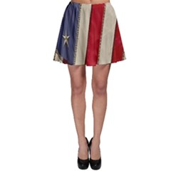 Usa Flag Skater Skirt