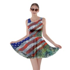 Usa United States Of America Images Independence Day Skater Dress