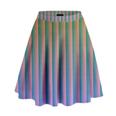 Hald Identity High Waist Skirt