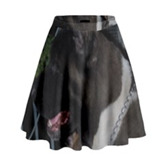 Akita second High Waist Skirt