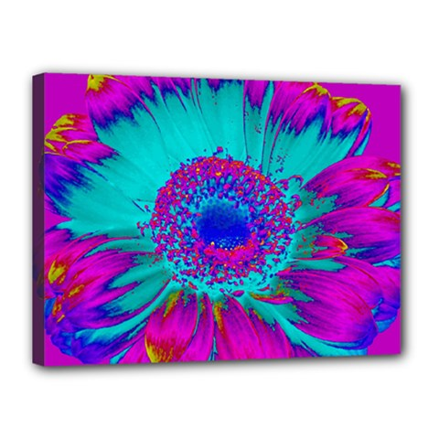 Retro Colorful Decoration Texture Canvas 16  x 12