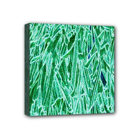 Green Background Pattern Mini Canvas 4  X 4
