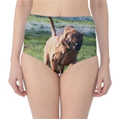 Bloodhound Running High-Waist Bikini Bottoms