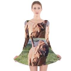 Bloodhound Running Long Sleeve Velvet Skater Dress