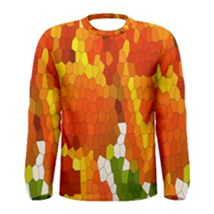 Mosaic Glass Colorful Color Men s Long Sleeve Tee