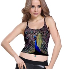 Multi Colored Peacock Spaghetti Strap Bra Top