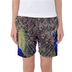 Multi Colored Peacock Women s Basketball Shorts