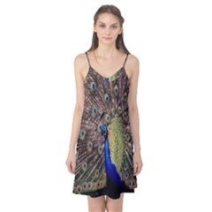 Multi Colored Peacock Camis Nightgown