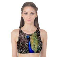Multi Colored Peacock Tank Bikini Top