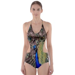 Multi Colored Peacock Cut Out One Piece Swimsuit