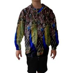 Multi Colored Peacock Hooded Wind Breaker (Kids)