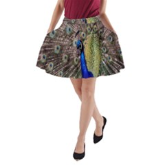 Multi Colored Peacock A Line Pocket Skirt