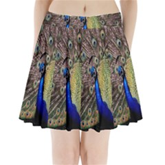 Multi Colored Peacock Pleated Mini Skirt
