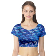Lines Geometry Architecture Texture Short Sleeve Crop Top (Tight Fit)