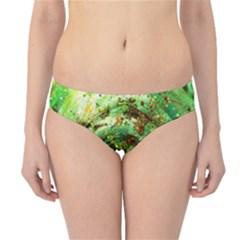 Canvas Acrylic Design Color Hipster Bikini Bottoms