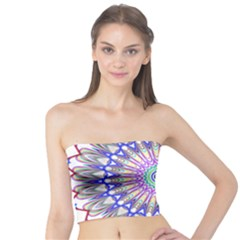 Prismatic Line Star Flower Rainbow Tube Top