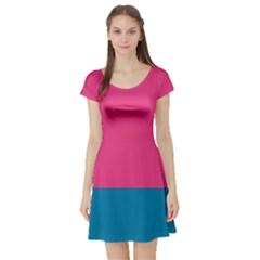 Flag Color Pink Blue Short Sleeve Skater Dress