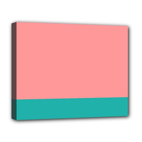 Flag Color Pink Blue Line Deluxe Canvas 20  x 16