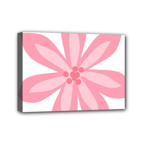 Pink Lily Flower Floral Mini Canvas 7  x 5