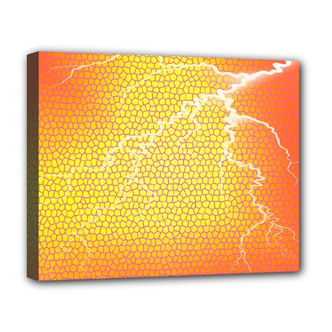 Exotic Backgrounds Deluxe Canvas 20  x 16