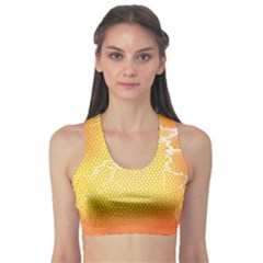 Exotic Backgrounds Sports Bra