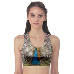 Indian Peacock Plumage Sports Bra