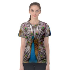 Indian Peacock Plumage Women s Sport Mesh Tee