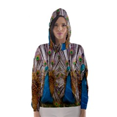 Indian Peacock Plumage Hooded Wind Breaker (Women)