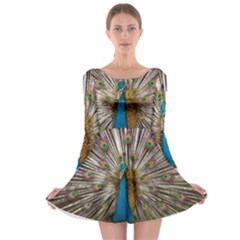 Indian Peacock Plumage Long Sleeve Skater Dress
