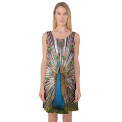 Indian Peacock Plumage Sleeveless Satin Nightdress