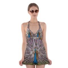 Indian Peacock Plumage Halter Swimsuit Dress