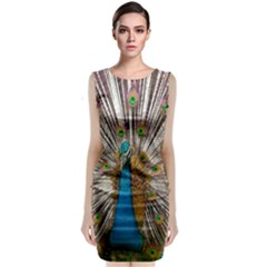 Indian Peacock Plumage Classic Sleeveless Midi Dress