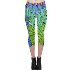 Peacock Bird Animation Capri Leggings