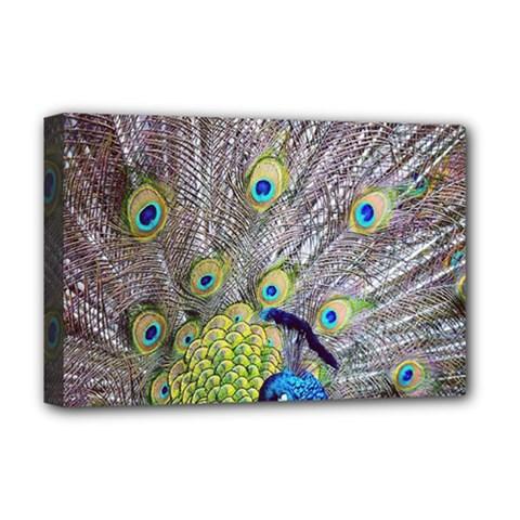 Peacock Bird Feathers Deluxe Canvas 18  x 12