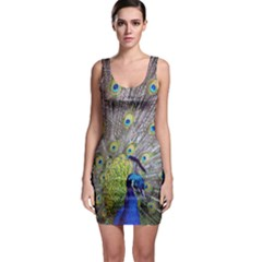 Peacock Bird Feathers Sleeveless Bodycon Dress