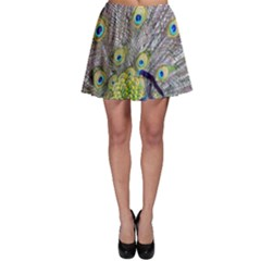 Peacock Bird Feathers Skater Skirt