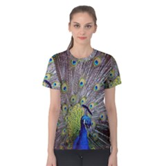 Peacock Bird Feathers Women s Cotton Tee