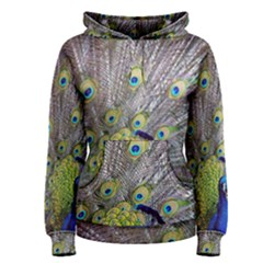Peacock Bird Feathers Women s Pullover Hoodie