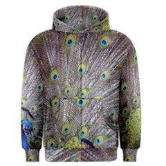 Peacock Bird Feathers Men s Zipper Hoodie