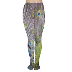 Peacock Bird Feathers Women s Tights
