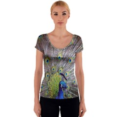 Peacock Bird Feathers Women s V-Neck Cap Sleeve Top