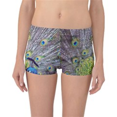 Peacock Bird Feathers Reversible Bikini Bottoms