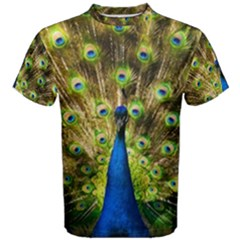 Peacock Bird Men s Cotton Tee