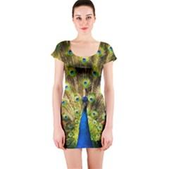 Peacock Bird Short Sleeve Bodycon Dress