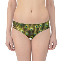 Peacock Bird Hipster Bikini Bottoms
