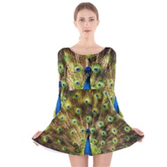 Peacock Bird Long Sleeve Velvet Skater Dress