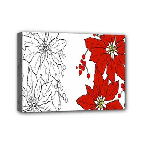 Poinsettia Flower Coloring Page Mini Canvas 7  x 5