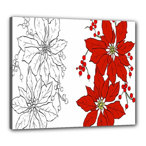 Poinsettia Flower Coloring Page Canvas 24  x 20