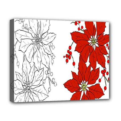 Poinsettia Flower Coloring Page Deluxe Canvas 20  x 16